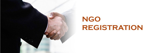 Two Business People Shaking Their Hands After NGO Registration.